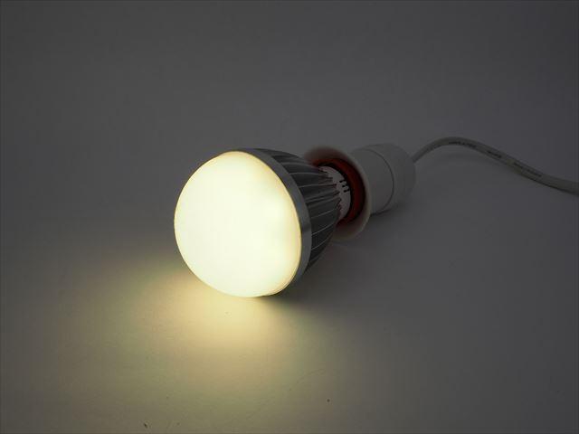 DC12V専用 5W LEDバルブライト ※Warm Whiteの写真です。